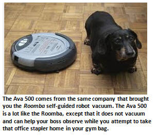 robot bosses - Roomba