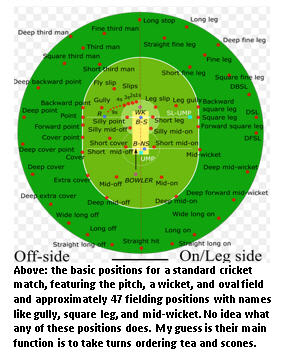 Cricket - field diagram