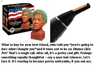Gift of guilt - chia pet
