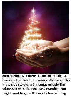 christmas-miracle-tree-in-hand